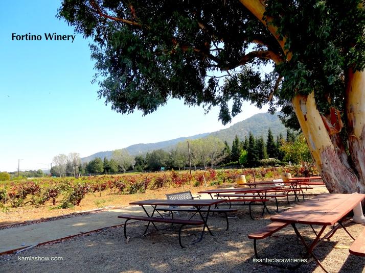 Fortino Winery